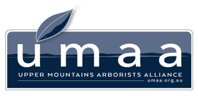 UMAA Logo